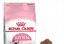Royal Canin Kitten Yavru Kedi Maması